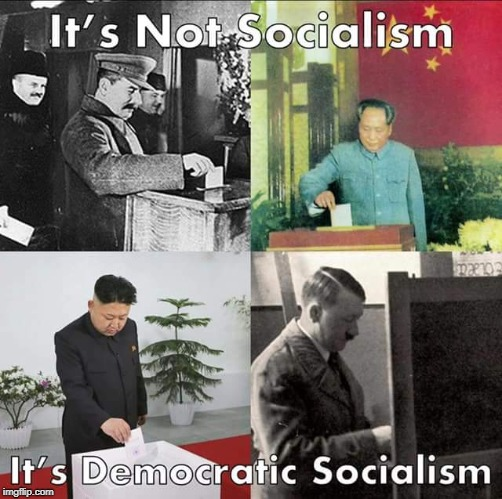 At least we get to vote! | It's Not Socialism It's Democratic Socialism | image tagged in stalin,mao,kim jong un,hitler,democratic socialism,memes | made w/ Imgflip meme maker