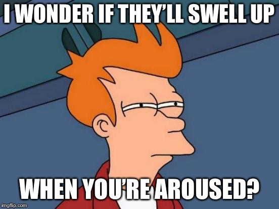 Futurama Fry Meme | I WONDER IF THEY'LL SWELL UP WHEN YOU'RE AROUSED? | image tagged in memes,futurama fry | made w/ Imgflip meme maker