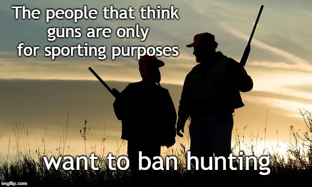 Hunting Ban | The people that think guns are only for sporting purposes want to ban hunting | image tagged in hunterviolence,hunting,gun bans | made w/ Imgflip meme maker