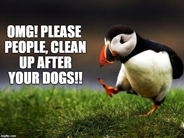 Unpopular Opinion Puffin Meme | OMG! PLEASE PEOPLE, CLEAN UP AFTER YOUR DOGS!! | image tagged in memes,unpopular opinion puffin | made w/ Imgflip meme maker