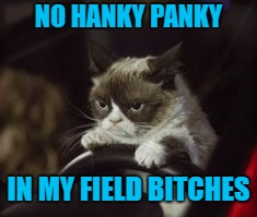 NO HANKY PANKY IN MY FIELD B**CHES | made w/ Imgflip meme maker