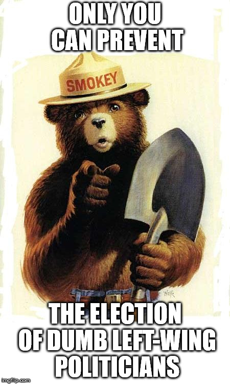 Smokey The Bear | ONLY YOU CAN PREVENT THE ELECTION OF DUMB LEFT-WING POLITICIANS | image tagged in smokey the bear | made w/ Imgflip meme maker