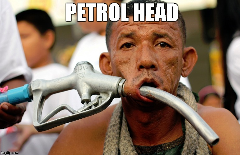 Petrol Head | PETROL HEAD | image tagged in pets,lady gaga | made w/ Imgflip meme maker