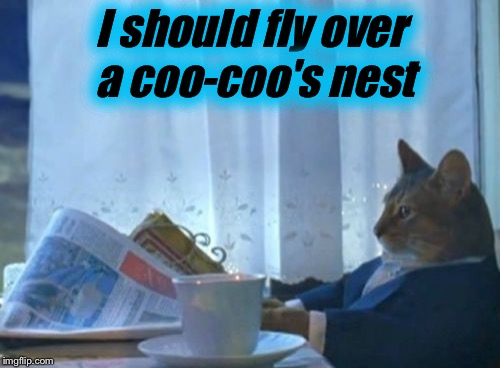 I Should Buy A Boat Cat Meme | I should fly over a coo-coo's nest | image tagged in memes,i should buy a boat cat | made w/ Imgflip meme maker
