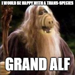 I WOULD BE HAPPY WITH A TRANS-SPECIES GRAND ALF | made w/ Imgflip meme maker