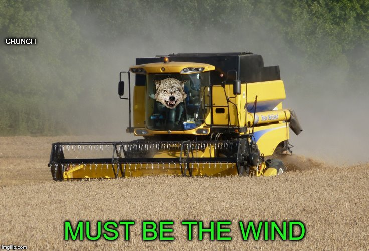 CRUNCH MUST BE THE WIND | made w/ Imgflip meme maker