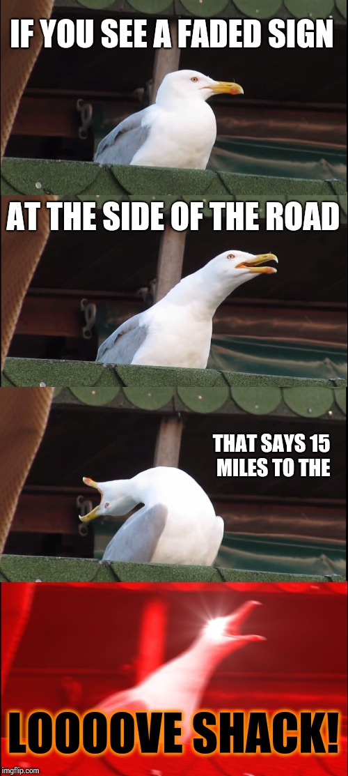 Inhaling Seagull Meme | IF YOU SEE A FADED SIGN AT THE SIDE OF THE ROAD THAT SAYS 15 MILES TO THE LOOOOVE SHACK! | image tagged in memes,inhaling seagull | made w/ Imgflip meme maker