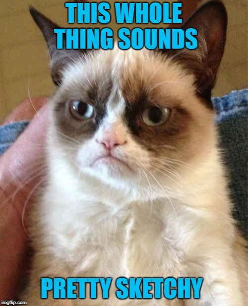 Grumpy Cat Meme | THIS WHOLE THING SOUNDS PRETTY SKETCHY | image tagged in memes,grumpy cat | made w/ Imgflip meme maker