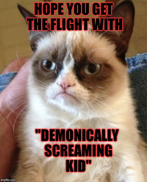 "Grumpy Cat Meme | HOPE YOU GET THE FLIGHT WITH ""DEMONICALLY SCREAMING KID"" 