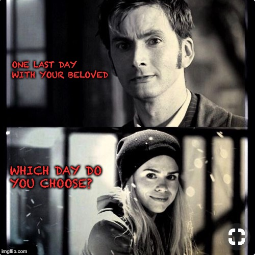 One last day with your beloved  | ONE LAST DAY WITH YOUR BELOVED WHICH DAY DO YOU CHOOSE? | image tagged in doctor who,rose tyler,10th doctor | made w/ Imgflip meme maker