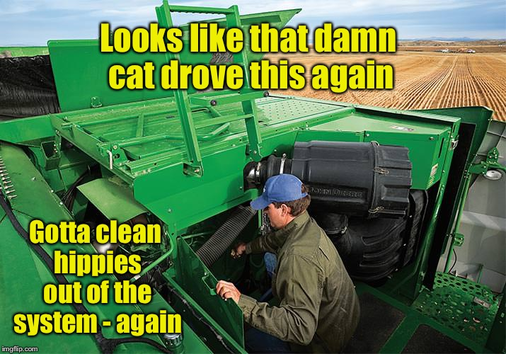 Looks like that damn cat drove this again Gotta clean hippies out of the system - again | made w/ Imgflip meme maker