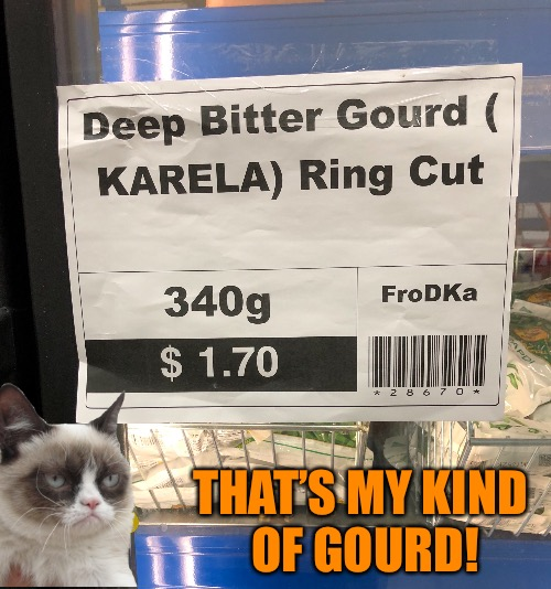 THAT'S MY KIND OF GOURD! | image tagged in memes,grumpy cat | made w/ Imgflip meme maker