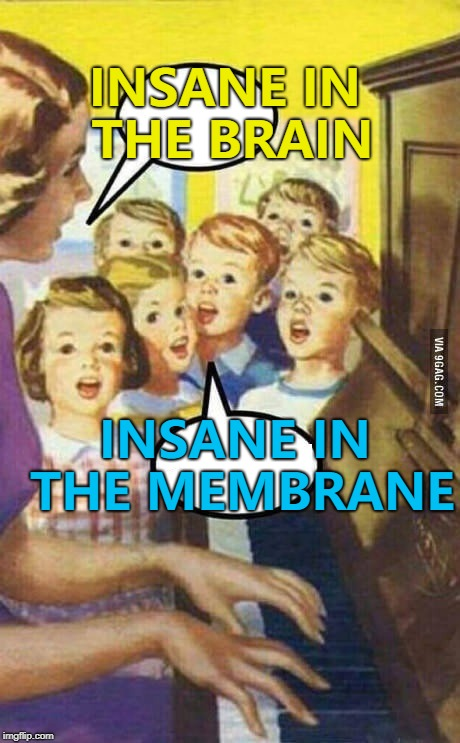 Tomorrow kids, we'll have some NWA... :) | INSANE IN THE BRAIN INSANE IN THE MEMBRANE | image tagged in teache kid singing,memes,cypress hill,music,insane in the brain | made w/ Imgflip meme maker
