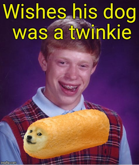 Doge Twinkie | Wishes his dog was a twinkie | image tagged in memes,bad luck brian | made w/ Imgflip meme maker