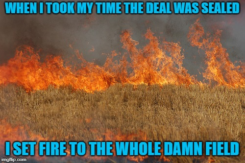 WHEN I TOOK MY TIME THE DEAL WAS SEALED I SET FIRE TO THE WHOLE DAMN FIELD | made w/ Imgflip meme maker