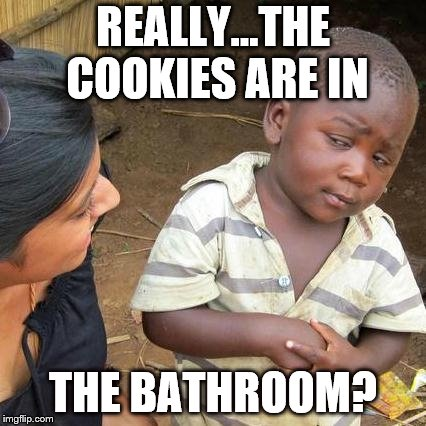 Third World Skeptical Kid Meme | REALLY...THE COOKIES ARE IN THE BATHROOM? | image tagged in memes,third world skeptical kid | made w/ Imgflip meme maker