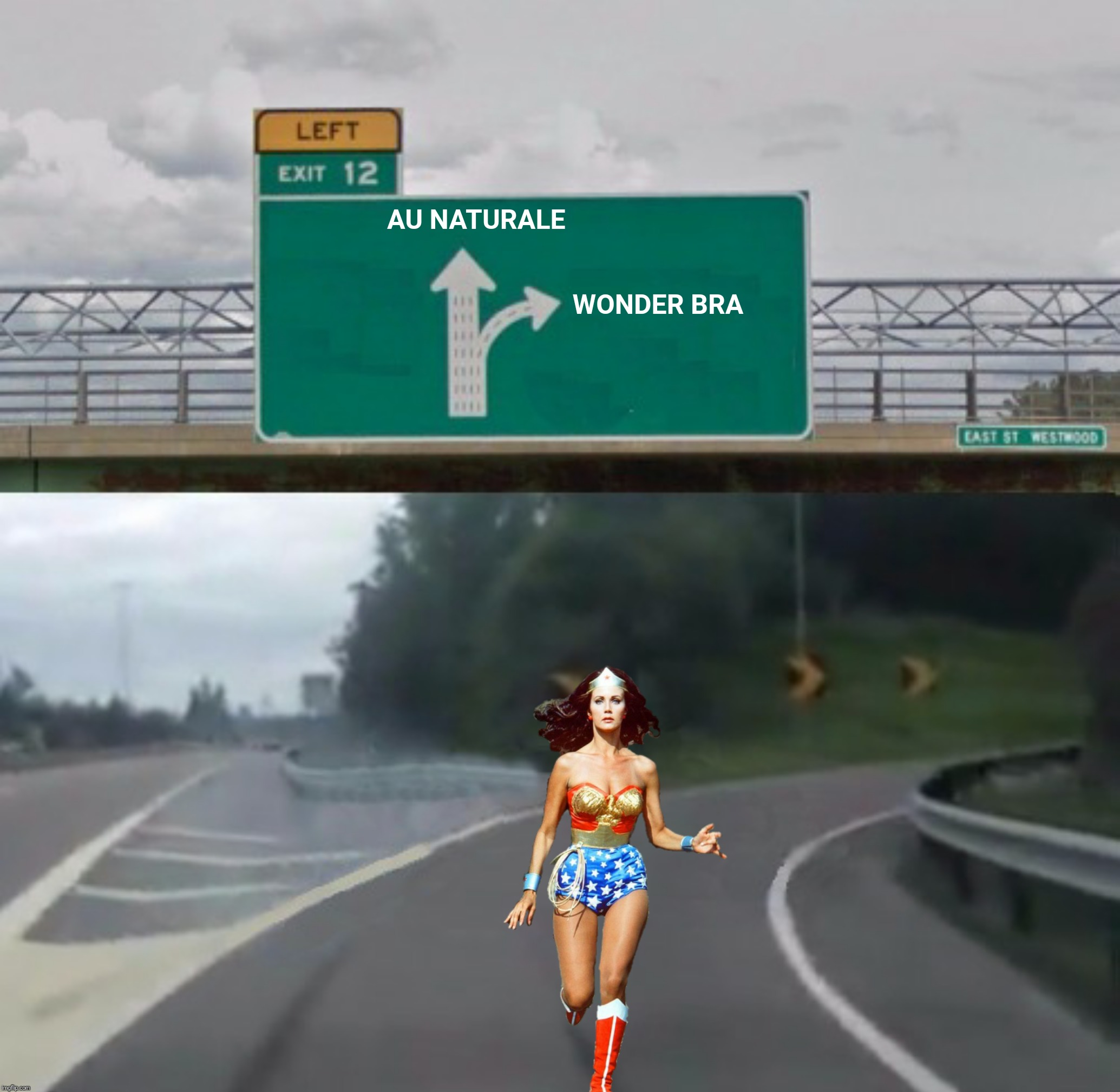 Bad Photoshop Sunday presents:  Don't Fence Me In | AU NATURALE WONDER BRA | image tagged in bad photoshop sunday,exit 12 off ramp,wonder woman | made w/ Imgflip meme maker