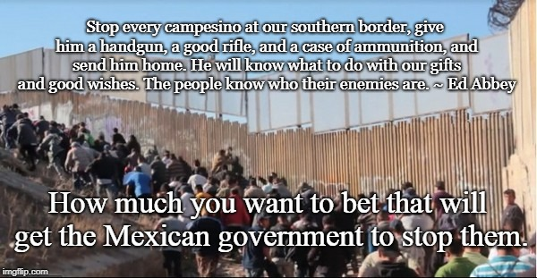 Illegal immigration part two | Stop every campesino at our southern border, give him a handgun, a good rifle, and a case of ammunition, and send him home. He will know wha | image tagged in illegal immigrants,ed abbey,border wall | made w/ Imgflip meme maker