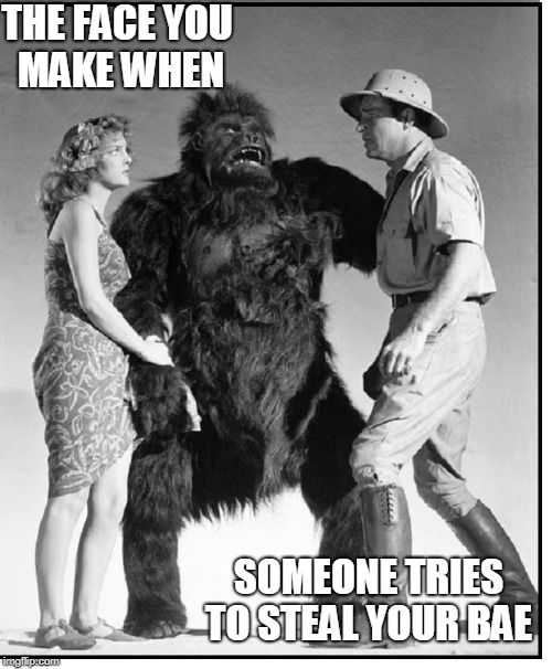 Jane was Quite Popular after her Breakup with Tarzan | THE FACE YOU MAKE WHEN SOMEONE TRIES TO STEAL YOUR BAE | image tagged in vince vance,tarzan  jane,jungle,the great white hunter,intra-species dating,gorilla | made w/ Imgflip meme maker