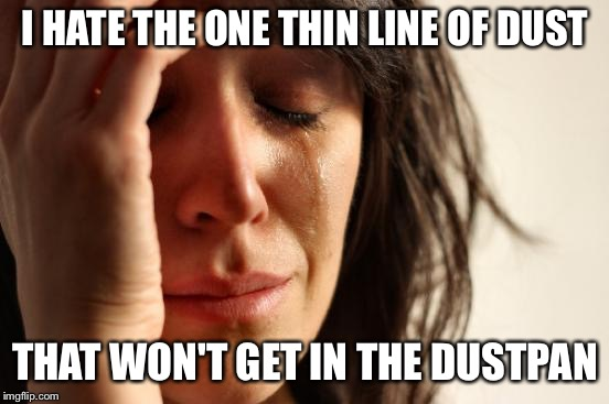 First World Problems Meme | I HATE THE ONE THIN LINE OF DUST THAT WON'T GET IN THE DUSTPAN | image tagged in memes,first world problems | made w/ Imgflip meme maker