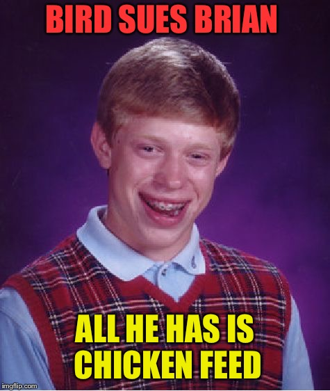 Bad Luck Brian Meme | BIRD SUES BRIAN ALL HE HAS IS CHICKEN FEED | image tagged in memes,bad luck brian | made w/ Imgflip meme maker