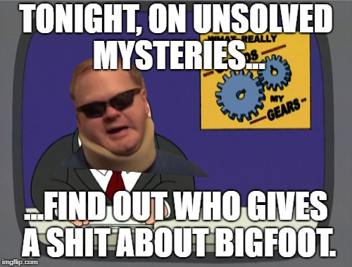 Peter Griffin News Meme | TONIGHT, ON UNSOLVED MYSTERIES... ...FIND OUT WHO GIVES A SHIT ABOUT BIGFOOT. | image tagged in memes,peter griffin news | made w/ Imgflip meme maker