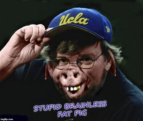 STUPID BRAINLESS FAT PIG | image tagged in stupid | made w/ Imgflip meme maker