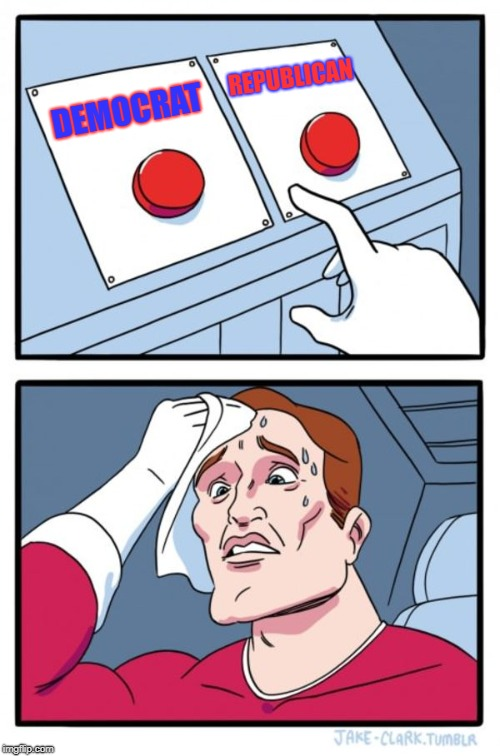Two Buttons Meme | DEMOCRAT REPUBLICAN | image tagged in memes,two buttons,i decided to choose none of them | made w/ Imgflip meme maker