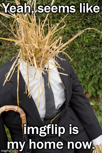 straw man, as in logical flaw | Yeah, seems like imgflip is my home now. | image tagged in straw man | made w/ Imgflip meme maker