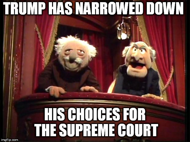 Supreme Court Choices | TRUMP HAS NARROWED DOWN HIS CHOICES FOR THE SUPREME COURT | image tagged in muppets | made w/ Imgflip meme maker