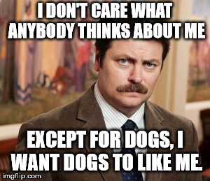 Ron Swanson Meme | I DON'T CARE WHAT ANYBODY THINKS ABOUT ME EXCEPT FOR DOGS, I WANT DOGS TO LIKE ME. | image tagged in memes,ron swanson | made w/ Imgflip meme maker
