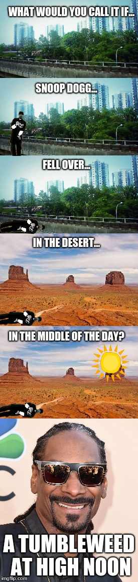 The classic pot desert pun | SNOOP DOGG... WHAT WOULD YOU CALL IT IF... FELL OVER... IN THE DESERT... IN THE MIDDLE OF THE DAY? A TUMBLEWEED AT HIGH NOON | image tagged in snoop dogg | made w/ Imgflip meme maker