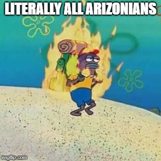 spongebob on fire | LITERALLY ALL ARIZONIANS | image tagged in spongebob on fire | made w/ Imgflip meme maker