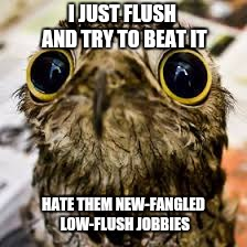 I JUST FLUSH AND TRY TO BEAT IT HATE THEM NEW-FANGLED LOW-FLUSH JOBBIES | made w/ Imgflip meme maker