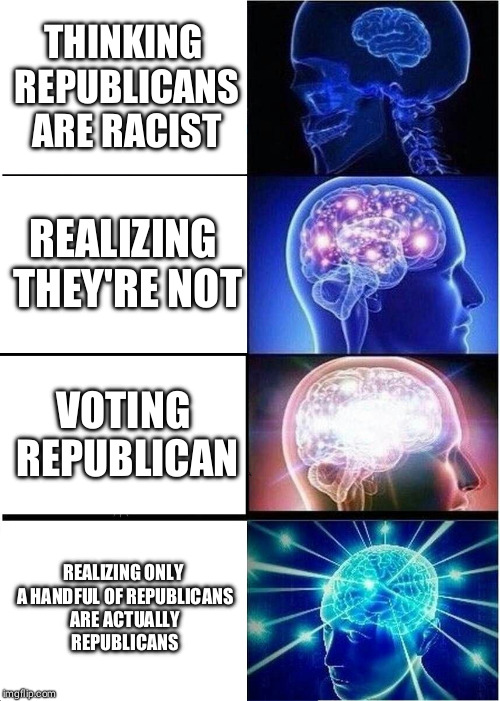 The rest care about power and power only | THINKING REPUBLICANS ARE RACIST REALIZING THEY'RE NOT VOTING REPUBLICAN REALIZING ONLY A HANDFUL OF REPUBLICANS ARE ACTUALLY REPUBLICANS | image tagged in memes,expanding brain,politics,republicans | made w/ Imgflip meme maker