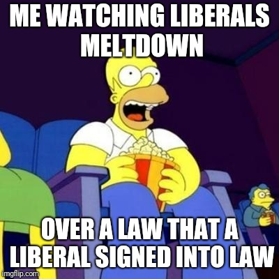 Homer eating popcorn | ME WATCHING LIBERALS MELTDOWN OVER A LAW THAT A LIBERAL SIGNED INTO LAW | image tagged in homer eating popcorn | made w/ Imgflip meme maker