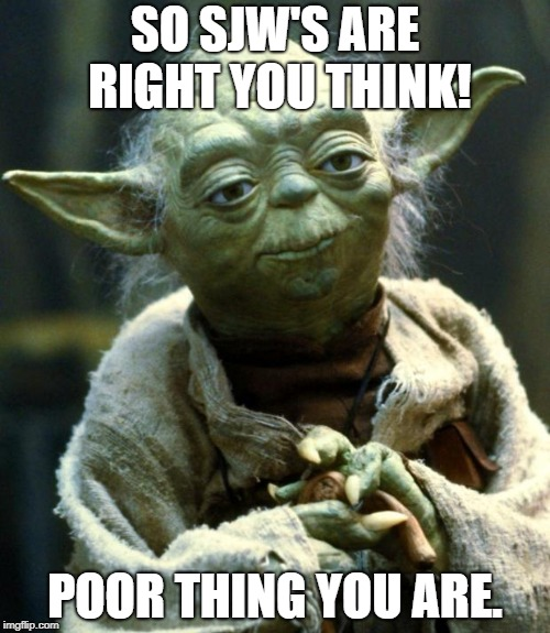 Star Wars Yoda Meme | SO SJW'S ARE RIGHT YOU THINK! POOR THING YOU ARE. | image tagged in memes,star wars yoda | made w/ Imgflip meme maker