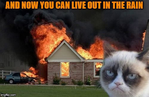 Burn Kitty Meme | AND NOW YOU CAN LIVE OUT IN THE RAIN | image tagged in memes,burn kitty,grumpy cat | made w/ Imgflip meme maker