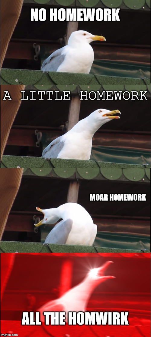 Inhaling Seagull Meme | NO HOMEWORK A LITTLE HOMEWORK MOAR HOMEWORK ALL THE HOMWIRK | image tagged in memes,inhaling seagull | made w/ Imgflip meme maker