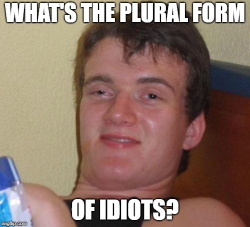 10 Guy | WHAT'S THE PLURAL FORM OF IDIOTS? | image tagged in memes,10 guy,dank memes,funny,idiots,bad puns | made w/ Imgflip meme maker
