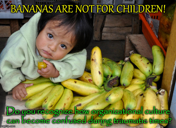 BANANAS ARE NOT FOR CHILDREN! Do you recognize how organizational culture can become confused during traumatic times? | image tagged in verify,behavior,endorses,mission,supports,people | made w/ Imgflip meme maker