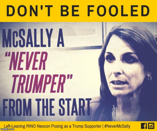 Martha McSally, Phony NeverTrumper Trying to Fool the Low Information Crowd. Kelli Ward is the real deal. #AZSen meme | image tagged in martha mcsally,arizona,senate,nevertrump,rino,kelli ward | made w/ Imgflip meme maker