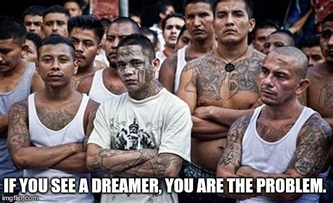 IF YOU SEE A DREAMER, YOU ARE THE PROBLEM. | image tagged in ms13 family pic | made w/ Imgflip meme maker