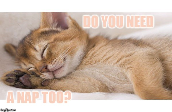 DO YOU NEED A NAP TOO? | made w/ Imgflip meme maker
