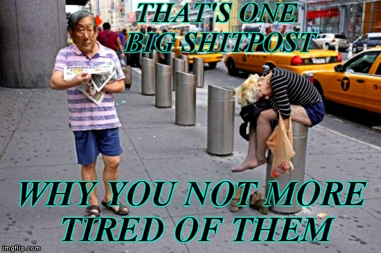 Had to take off her shoes even... | THAT'S ONE BIG SHITPOST WHY YOU NOT MORE TIRED OF THEM | image tagged in shitpost,high expectation asian dad,so tired | made w/ Imgflip meme maker