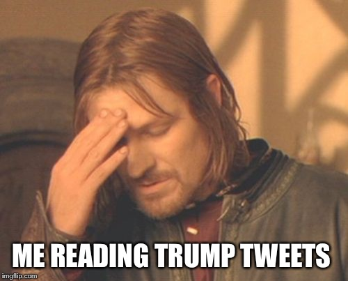 Frustrated Boromir Meme | ME READING TRUMP TWEETS | image tagged in memes,frustrated boromir | made w/ Imgflip meme maker