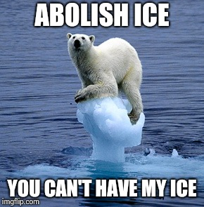 The only thing stupider than abolishing ICE was Hillary for President | ABOLISH ICE YOU CAN'T HAVE MY ICE | image tagged in global warming polar bear,libtards,dumb and dumber,and everybody loses their minds,america first | made w/ Imgflip meme maker