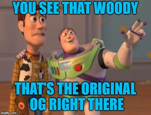 X, X Everywhere Meme | YOU SEE THAT WOODY THAT'S THE ORIGINAL OG RIGHT THERE | image tagged in memes,x x everywhere | made w/ Imgflip meme maker
