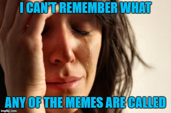 First World Problems Meme | I CAN'T REMEMBER WHAT ANY OF THE MEMES ARE CALLED | image tagged in memes,first world problems | made w/ Imgflip meme maker