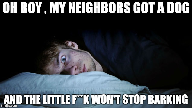 Don't get me wrong , I love dogs , quiet ones | OH BOY , MY NEIGHBORS GOT A DOG AND THE LITTLE F**K WON'T STOP BARKING | image tagged in night terror,wrong neighborhood,barking,up all night,thanks,dog | made w/ Imgflip meme maker